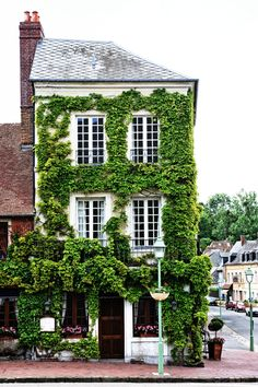 traditional home design | classic home design | brick and ivy | green ivy | design | brick house | greenery | House covered with vines | Beaumont, France.