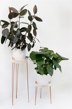 If you're looking for a simple way to organize and display all of your plants, then you need to check out these awesome indoor / outdoor DIY plant stand ideas for inspiration! #plantstand #gardenideas #indoorplants #diy Wooden Plant Stands, Diy Plant Stand, Cheap Home Decor, Diy Home Decor, Outdoor Plants, Indoor Outdoor, Diy Wall Decor, Bedroom Decor, Hanging Plants