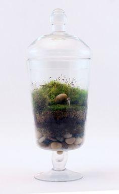 Twigterrariums.com | Kick-ass terrariums for your desk or mantlepiece