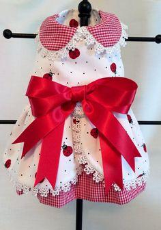 XXSMALL-Chihuahua Tea Cup Yorkie Ladybug Gingham Dress Ready to Ship Princess Amee