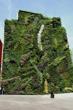 caixaforum vertical garden, madrid, spain/patrick blanc
