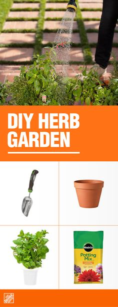 Savor the flavor of your favorite herbs with a DIY herb garden. Choose the herbs you love to cook with–basil, rosemary, thyme, cilantro –and have fresh herbs at the ready, whenever you need them. Get all the supplies to grow your own edible garden at The Diy Herb Garden, Olive Garden, Edible Garden, Garden Ideas, Garden Fencing, Patio Ideas, Container Gardening, Gardening Tips, Vegetable Gardening