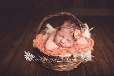 Newborn Baby Girl | Baby in a Basket | Coral and Brown | Orlando Newborn Photographer | Meghan Vail Photography