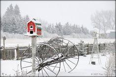 Winter birdhouse by Schneidley @ Flickr - Photo Sharing!