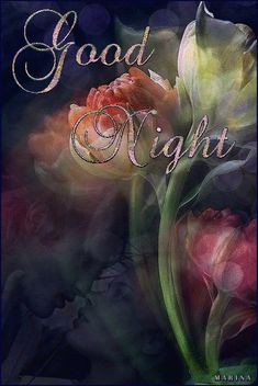 ImrAn 💗 hirA till our last day Mere jaan 👩❤️👨 just remember that darling husband ❤️ Good Night Babe, Good Night Thoughts, Good Night Beautiful, Good Night Love Images, Good Night Prayer, Good Night I Love You, Good Night Friends, Good Night Blessings, Good Night Wishes