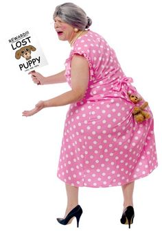 http://images.halloweencostumes.com/products/4419/1-2/lost-dog-costume.jpg