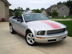 I'm in love with the Warriors in Pink!!! jw mustang warriors in pink for sale - Google Search