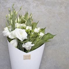 Happy Friday!!! Morning, todays 'blooms of the day'...from $45 delivered, out of zone delivery option now online, available to order online until 1pm or until sold out!