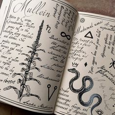 The Hedge Witch's Herbal Grimoire, second edition