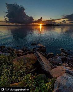 #Repost @giuseppebarino  The symphony of the evening #trasimeno #umbriatourism #umbria #lagotrasimeno2016 #trasimenolake #nikonphotography #nikoncataloniaphotography #nikonlandscape #samyang14mm #samyang #italy #italia #ita #landscape #photo #photographer #sunset #sunset #reflection #volgoumbria #sanfeliciano #shots #watercolor #color #foto #aroundme #paesaggi_italiani