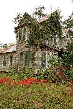 Forgotten In Georgia
