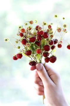 wild berries / smultron i bukett