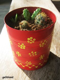 painted tin can with cactus