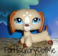 369 Best Lps I Want Images Little Pets Littlest Pet Shops Little
