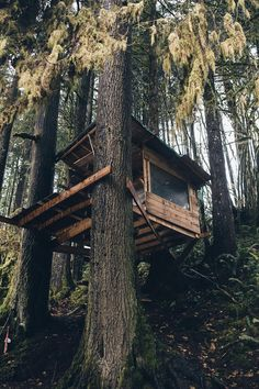 A rough hewn cabin where art & strange things happen. Woodland House, Forest House, Ideas Cabaña, Tree House Plans, Cool Tree Houses, Tree House Designs, Cabin In The Woods, In The Tree, Play Houses