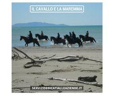 [MAREMMA] Il cavallo eterno strumento di lavoro e veicolo di promozione del territorio.