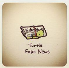 Cute Turtle Drawings, Animal Drawings, Cute Drawings, Kawaii Drawings, Cartoon Drawings, World Turtle Day, Turtle Life, Tiny Turtle, Sweet Turtles