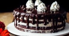 """My """"Ultimate Chocolate Cake"""" is beyond moist. You could LITERALLY leave out it on the counter for several days and it would still be luscious. The surprise favorite for me…View Post Fluffy Chocolate Cake, Salted Caramel Chocolate Cake, Ultimate Chocolate Cake, Chocolate Caramels, Chocolate Cheesecake, Homemade Chocolate, Chocolate Ganache, Coconut Chocolate, Chocolate Cakes"""