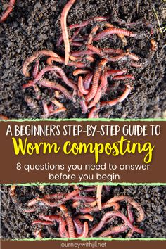 Worm Composting: A Step-by-Step Guide for Beginners If you want to begin your own vermicomposting, you'll need a DIY guide to answer all of your worm composting questions. From what kind of bin to buy to how to make it, whether you worm compost indoors or Garden Compost, Garden Soil, Box Garden, Compost Tea, Potager Garden, Forest Garden, Easy Garden, Garden Planters, Gardening For Beginners