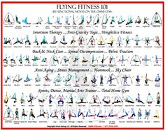 Google Image Result for http://www.yogaswings.com/wp-content/uploads/2011/10/omni-gym-aerial-yoga-Pose-Poster-email1.jpg