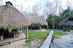 big cypress seminole indian reservation | Seminole indians village | Flickr - Photo Sharing!