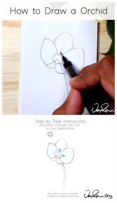 Easy Flower Drawings, Flower Drawing Tutorials, Flower Sketches, Pencil Art Drawings, Art Drawings Sketches, Easy Drawings, Art Tutorials, Flower Tutorial, Flower Drawing Tutorial Step By Step