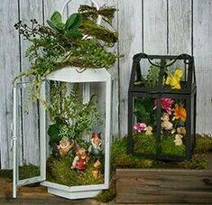Fairy garden in lantern