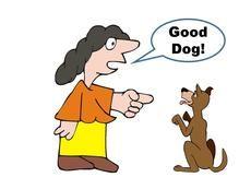 Ros er som regel ikke god nok belønning for hunder