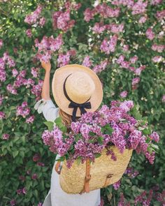 Lilac Season Outfit Details: Reformation Dress (also love this blue & white one), Market Backpack, Sezane Flats, Hat from Lily Charleston Love Flowers, Spring Flowers, Beautiful Flowers, Frühling Wallpaper, Photo Grid, Gal Meets Glam, Belle Photo, Floral Arrangements, Bloom