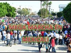 RENUNCIA PEÑA NIETO!! asi grita mexicali en la mega marcha reporte espec...