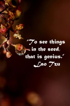 """To see things in the seed, that is genius.""  Lao Tzu – Mentors, leaders, parents, and educators touch this type of genius.  Explore 50 quotations on education and learning at http://www.examiner.com/article/fifty-quotations-inspire-education-and-learning"