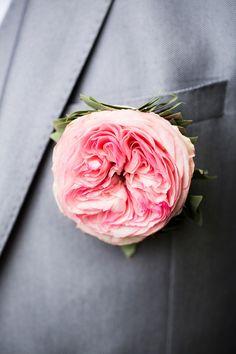 garden rose http://www.weddingchicks.com/2013/11/14/pink-and-purple-wedding/