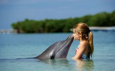 http://moowallpaper.com/wp-content/uploads/Little-Girl-Kissing-Dolphin-HD-Wallpaper.jpg