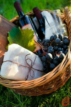 Red wine, grapes and cheese. Just add a crusty baguette for the perfect picnic in the park. Picnic Time, Summer Picnic, Fall Picnic, Spring Summer, Welcome Baskets, Wine Vineyards, Company Picnic, Wine Cheese, Wine Time
