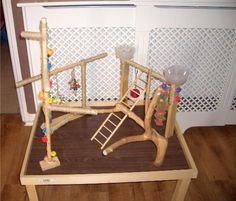 9 DIY Pet Playgrounds that are Paw-sitively Perfect