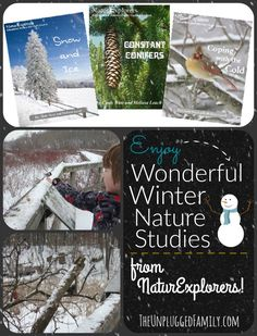 The Unplugged Family: Suggestions for some Wonderful Winter Nature Studies {Charlotte Mason Monday}