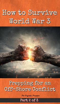 How to Survive World War 3: Prepping for an Off-Shore Conflict - The Organic Prepper