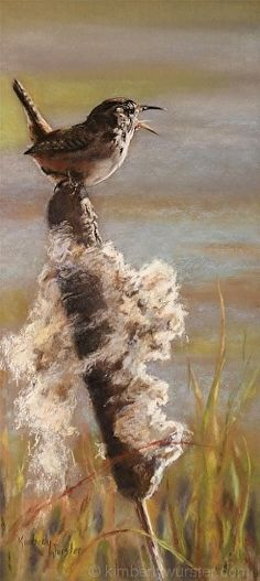 Wetland Serenade  (Marsh Wren) by Kimberly Wurster Pastel