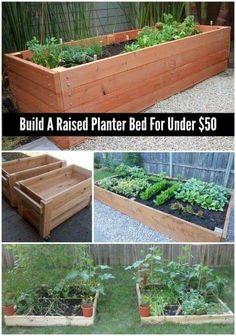 The cost to rework part of your lawn to make a garden bed can be pricey, but a cheaper solution will be to make your own raised planter bed for under … - All About Gardens Plants For Raised Beds, Raised Planter Beds, Raised Flower Beds, Raised Garden Beds, Deck Planter Boxes, Garden Planters, Outdoor Planters, Terrace Garden, Reggio Emilia