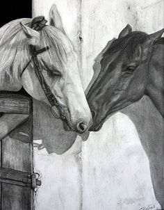 This is a graphite pencil drawing on acid-free Strathmore paper. Free shipping worldwide. I will ship the drawing matted with a white mat, such as shown in the second picture, but without the frame...