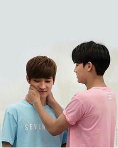"Dear Kim Mingyu, ""Just grab and kiss him, you fool"" Sincerely, Every Meanie Stan ever. Diecisiete Wonwoo, Seungkwan, Woozi, Jeonghan, Mingyu Seventeen, Seventeen Debut, Namjin, Yoonmin, Seventeen Instagram"