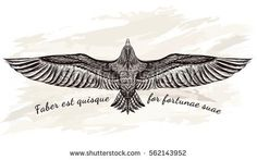 Detailed hand drawn eagle for tattoo art . Flight of falcon art tattoo Owl Tattoo Images, Stock Photos & Vectors Kunst Tattoos, Neue Tattoos, Body Art Tattoos, Hand Tattoos, Sleeve Tattoos, Eagle Wing Tattoos, Wolf Tattoos, Eagle Back Tattoo, Tatoos