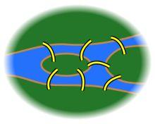 Teoría de grafos - Wikipedia, la enciclopedia libre