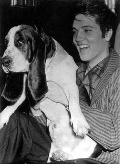 Ain't nothing but a hound dog. Elvis and adorable basset hound!