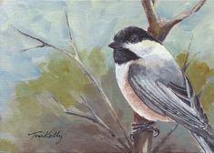 Winter Chickadee - acrylic by Toni Kelly Bird Paintings, Birds, Watercolor, Winter, Animals, Paintings Of Birds, Pen And Wash, Winter Time, Watercolor Painting