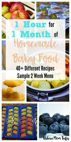 Wanting to make homemade baby food in one afternoon? Try this strategy to get a month's worth of food in one hour with 40+ Stage 1 Baby Food Recipes.