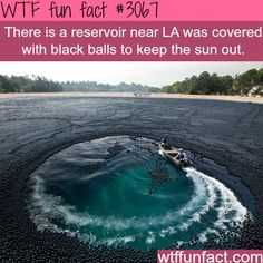 For Those Of You Wondering Why It Was To Keep The Water From Evaporating Funny FactsWtf
