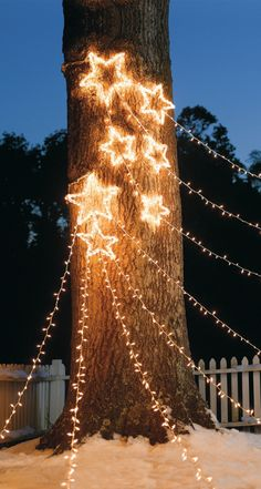 Create a spectacular nighttime scene with our Shooting Star Cluster Light Displays.