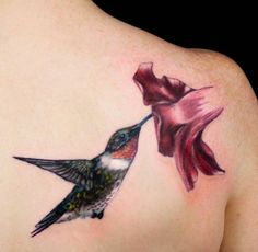 Hummingbird Tattoo Design by Nick Hart