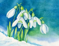 Snowdrops by Alina-Kurbiel on DeviantArt Illustration Blume, Botanical Illustration, Pastel Watercolor, Watercolor Paintings, Mini Paintings, Sketch Painting, Botanical Art, Flower Art, Collages
